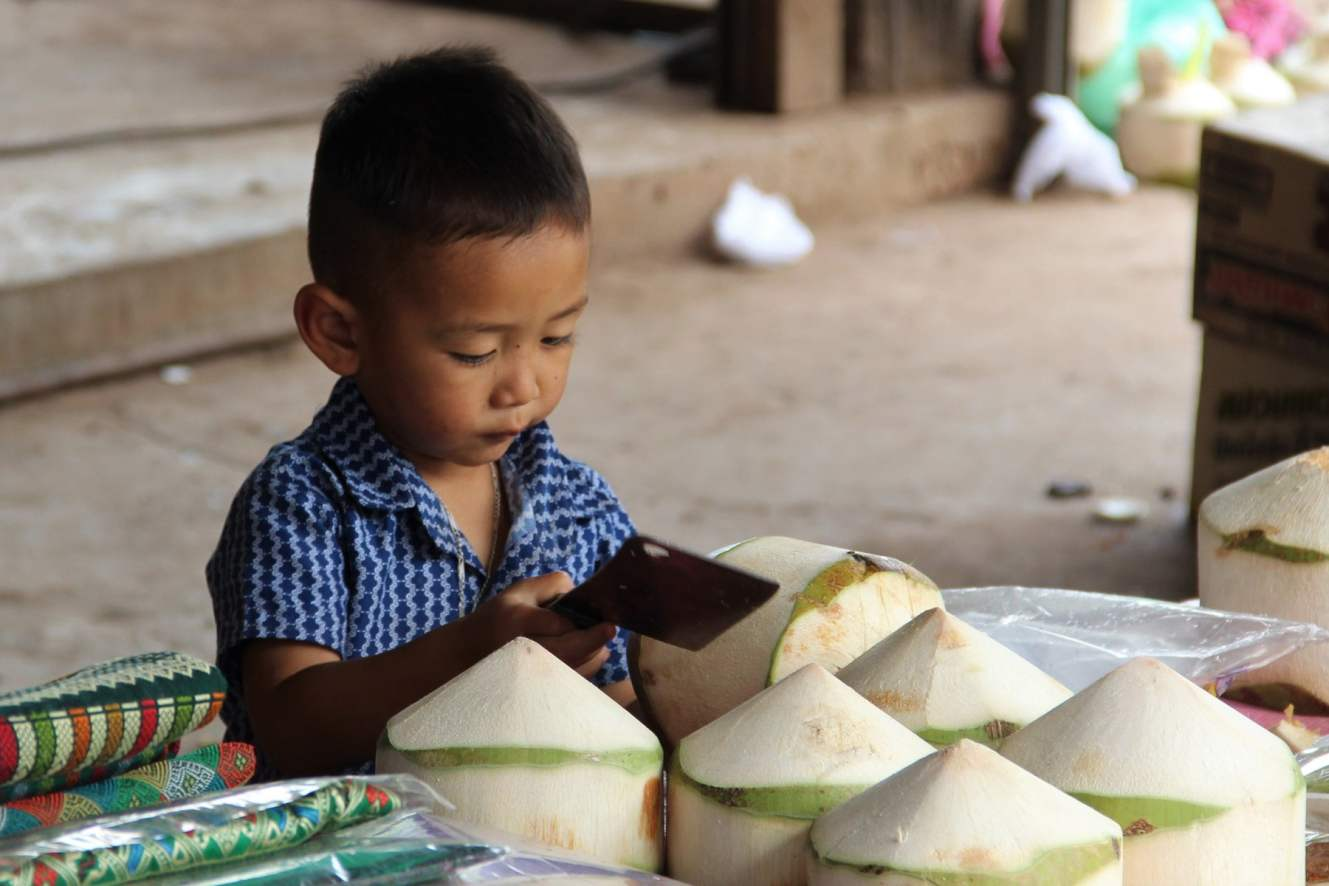 A child cutting coconuts