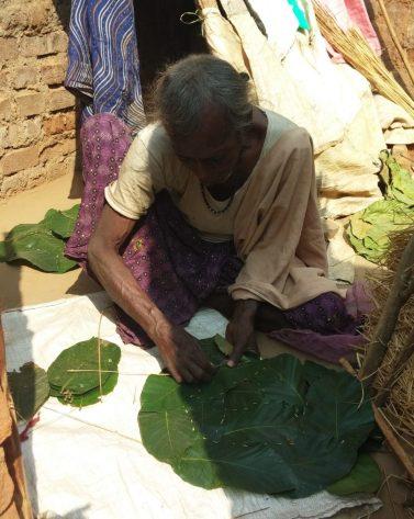Leaf plate making