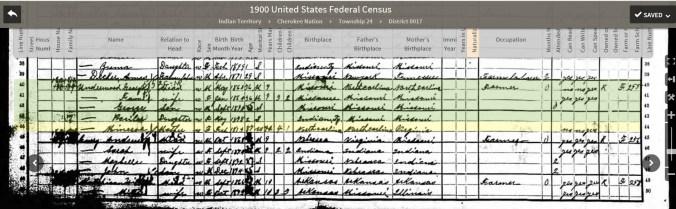 1900 Minerva Underwood census