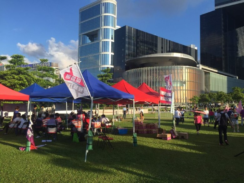 Pro-Beijing protesters resting in the grass area outside LegCo.