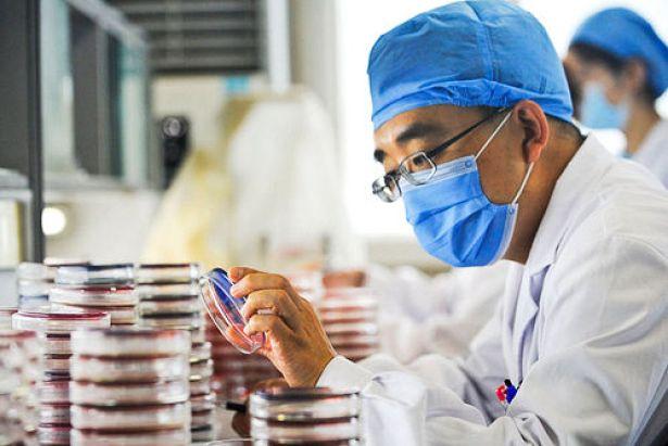 superbug guangzhou