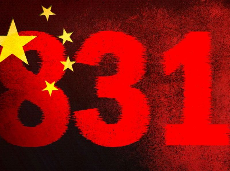 8.31 reform