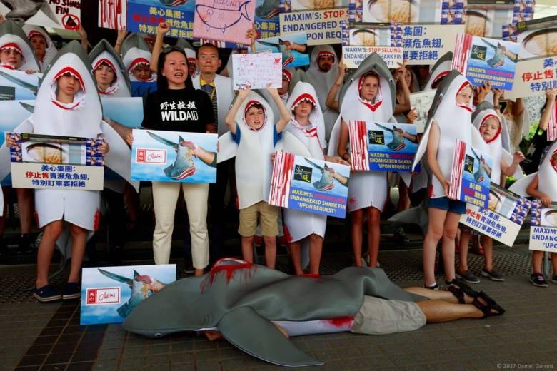 shark fin wildaid maxim protest