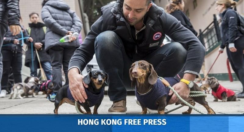 """Sausage Walk"" in Hong Kong"