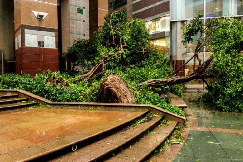 asuper typhoon mangkhut