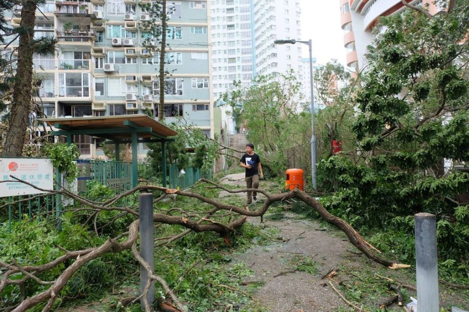 super typhoon mangkhut aftermath