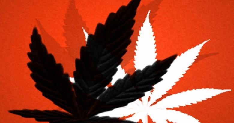 cannabis hong kong