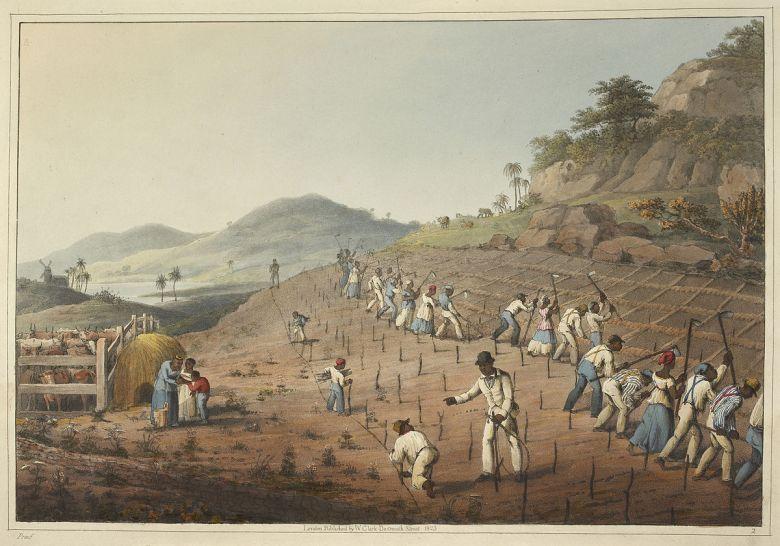 slavery digging
