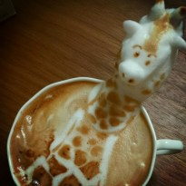Impressionnante girafe