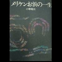 メリケンお浜の一生:小堺昭三