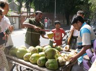 Coconut, India