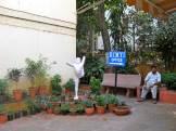 Iyenga Institute, Yoga