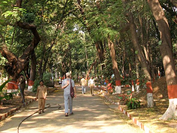 Walking through the park on Holi morning.
