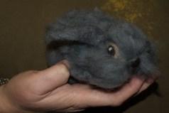 grey bunny4