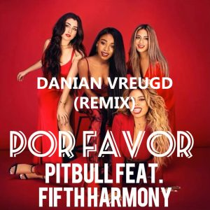 pitbull por favor FT. fifth harmony Danian Vreugd cover