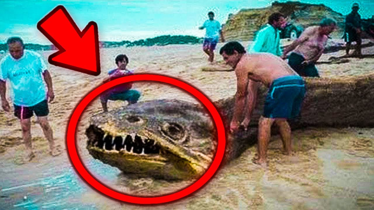 You Won't believe what people found on these beaches