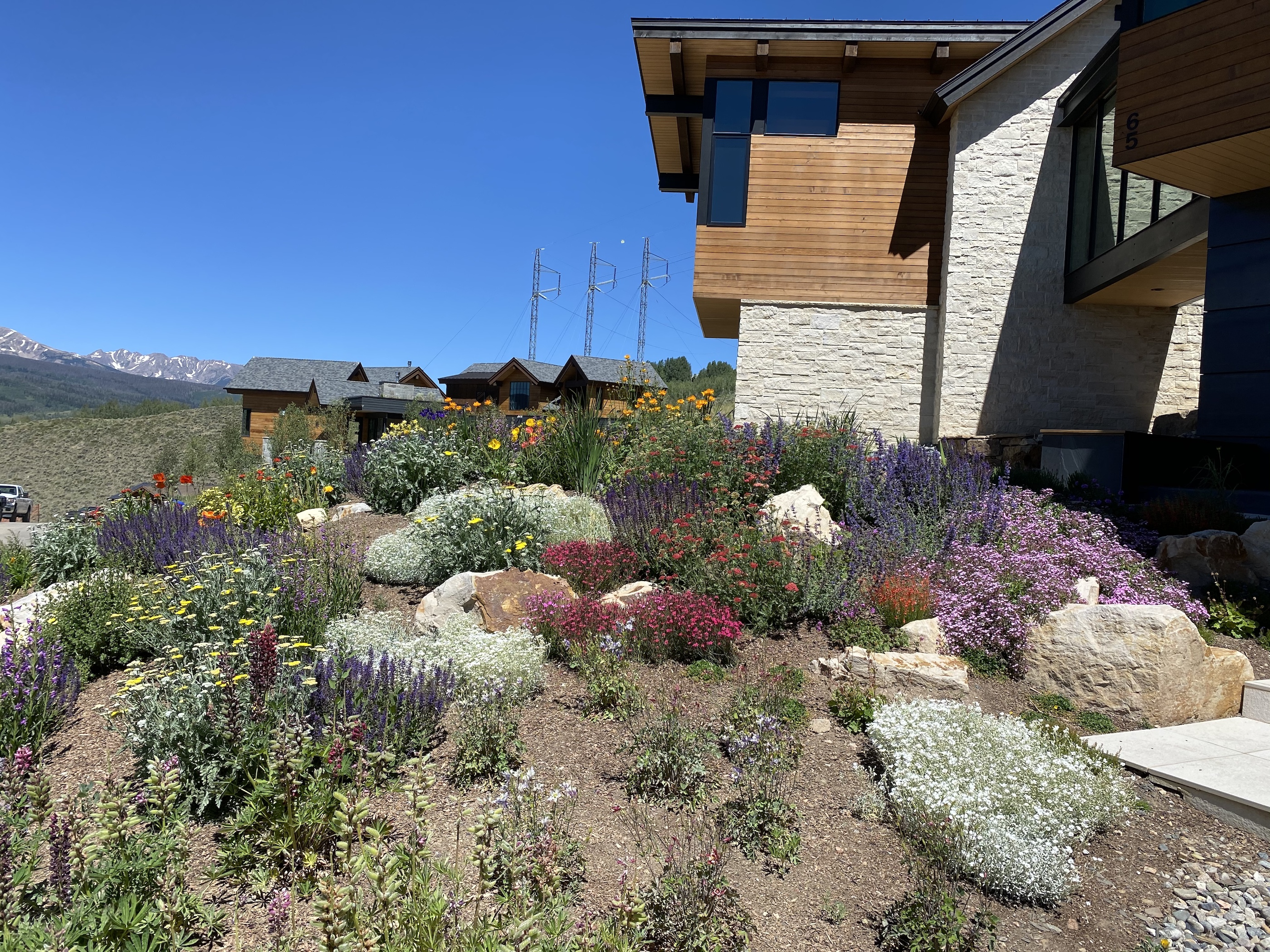 Landscaping Summit County Plantings 3