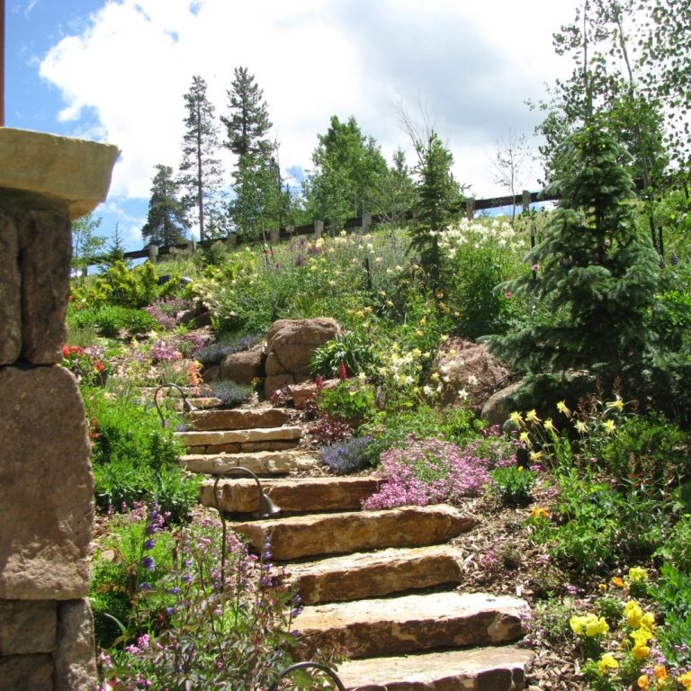 Silverthorne Landscaping Services