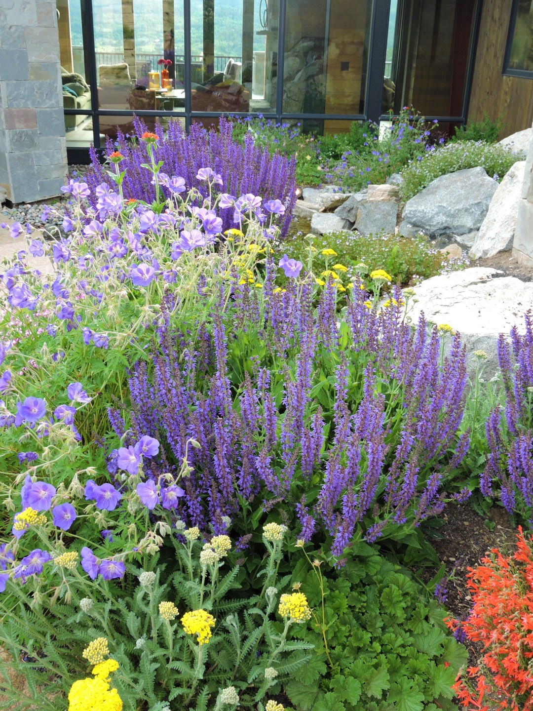 plantings and the hood advantage
