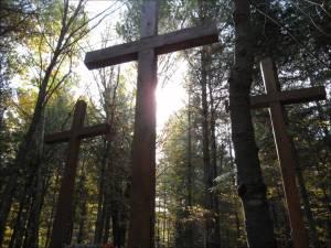 cross woods