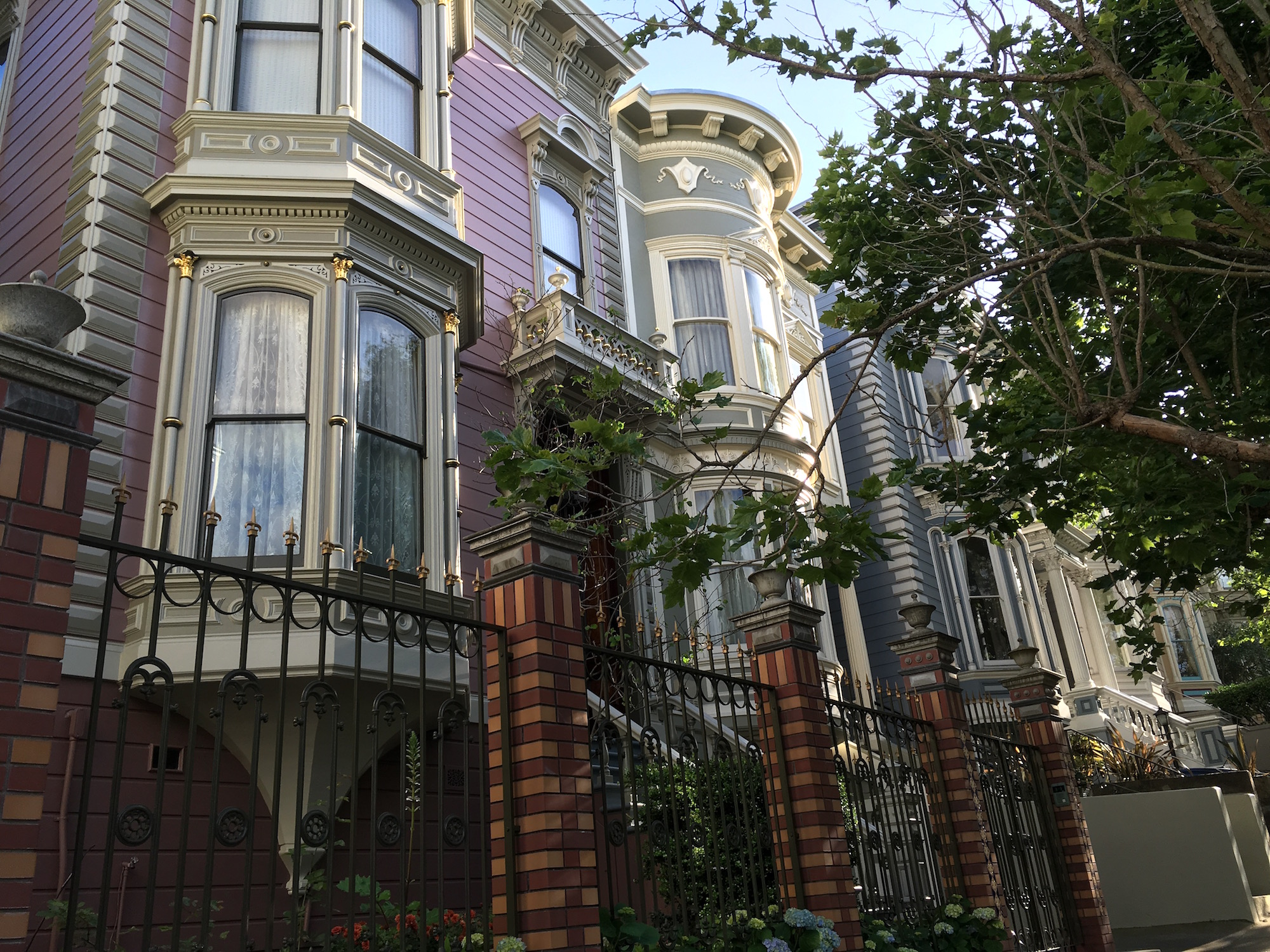 The Victorian Alliance Protects San Francisco's Beloved