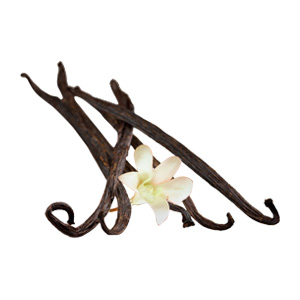 Fumari / French Vanilla(無難によく出来たバニラ)