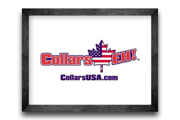 Collars USA