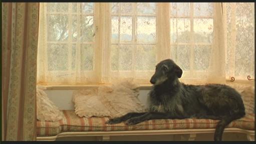 bedroom-window seat