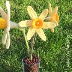 Free Daffodil Flowers Crochet Pattern