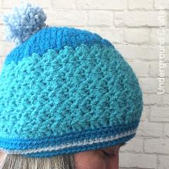 Bluebird Beanie Free Crochet Pattern