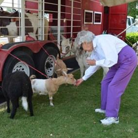 gallerysize_0008_nursing home 7
