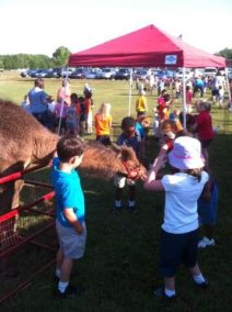 kids-petting-camel