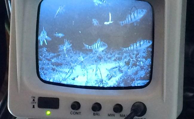 Aqua Vu Underwater Video Cameras Hook Line And Sinker