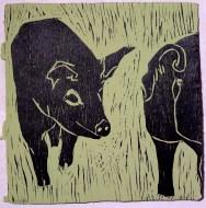 piglets #1