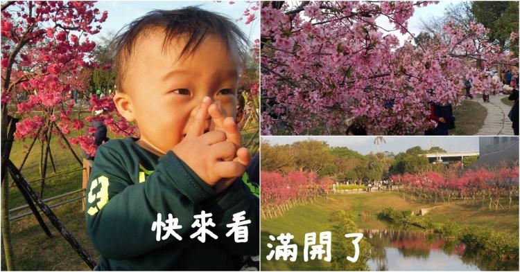 台中后里櫻花@中科崴立櫻花公園,回頭率超高的賞櫻秘境!