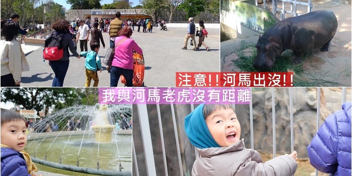新竹市東區  新竹動物園,停車這裡最便利,最佳觀察動物時間!