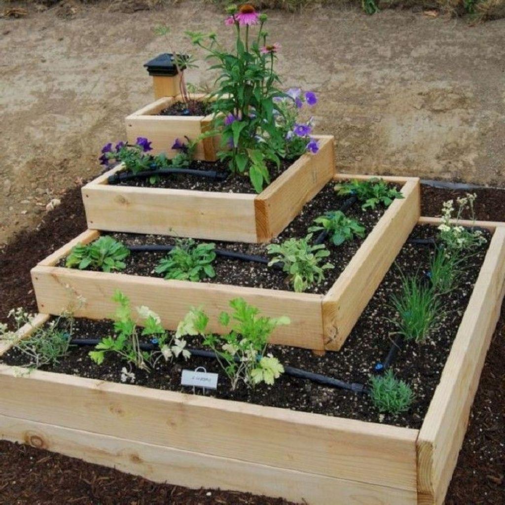 Inspiring Veggies Garden Layout For Your Outdoor Ideas 06