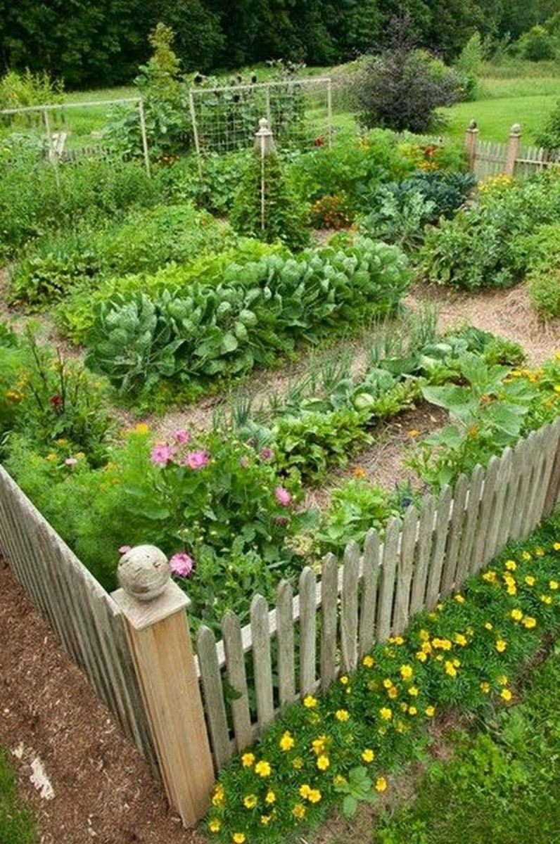 Inspiring Veggies Garden Layout For Your Outdoor Ideas 10