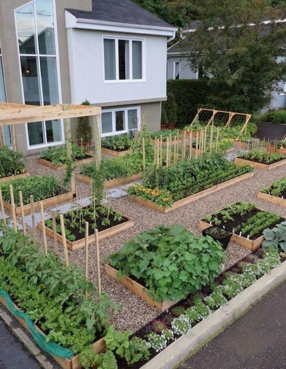 Inspiring Veggies Garden Layout For Your Outdoor Ideas 12