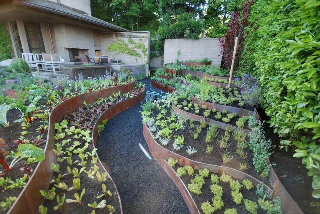 Inspiring Veggies Garden Layout For Your Outdoor Ideas 14