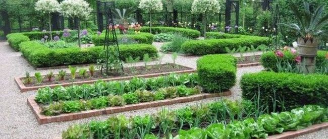 Inspiring Veggies Garden Layout For Your Outdoor Ideas 19