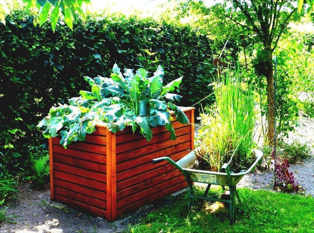 Inspiring Veggies Garden Layout For Your Outdoor Ideas 30