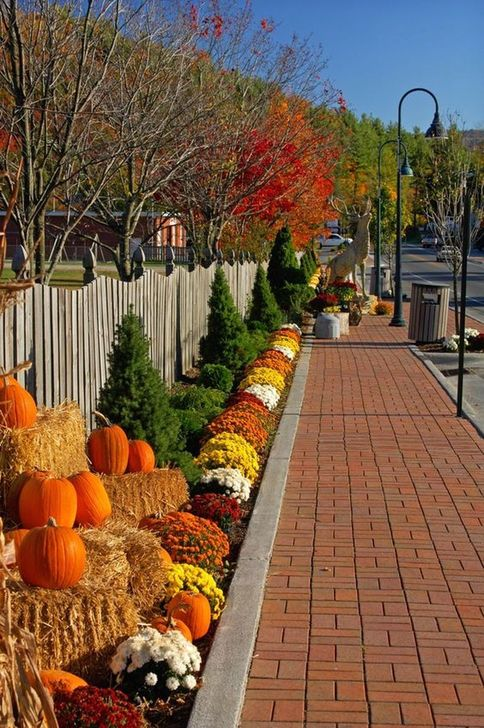 The Best Fall Outdoor Decor Ideas You Will Like 34