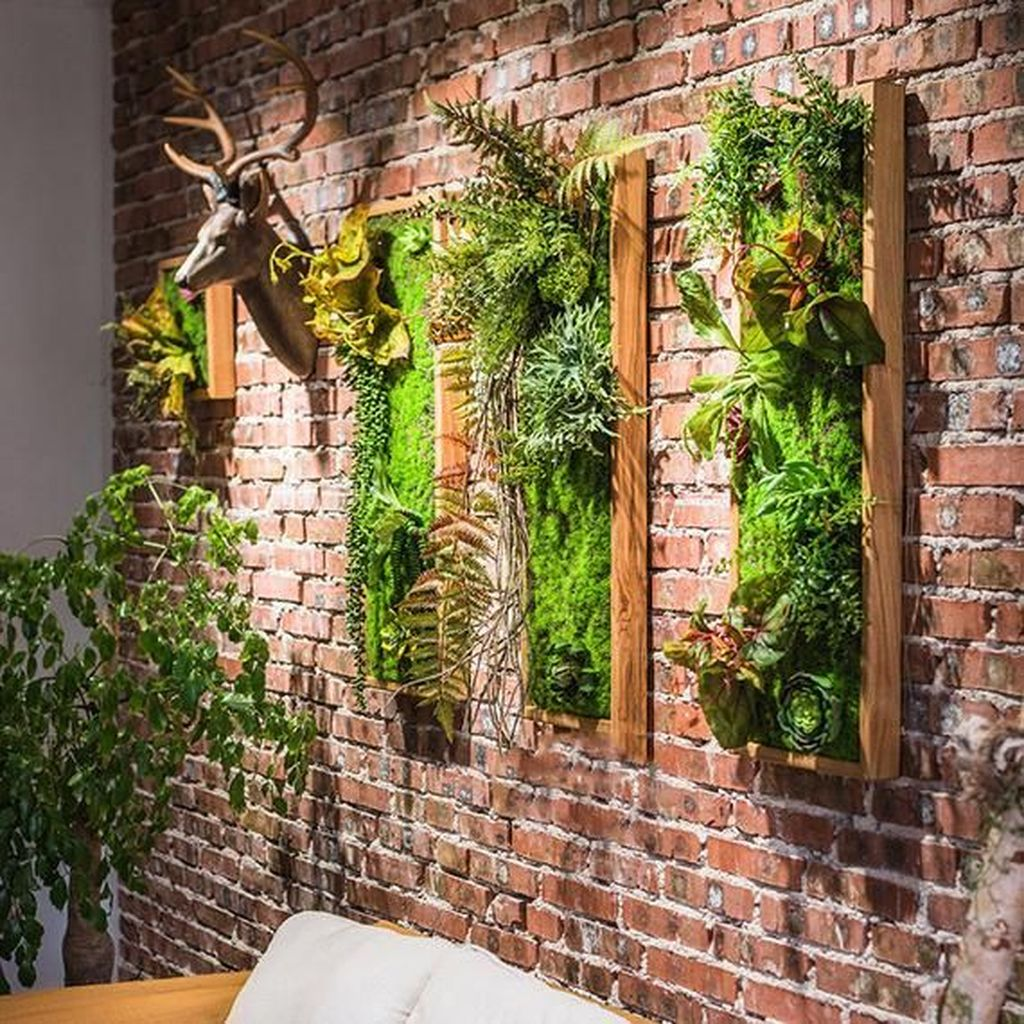 Amazing Living Wall Indoor Decoration Ideas 14