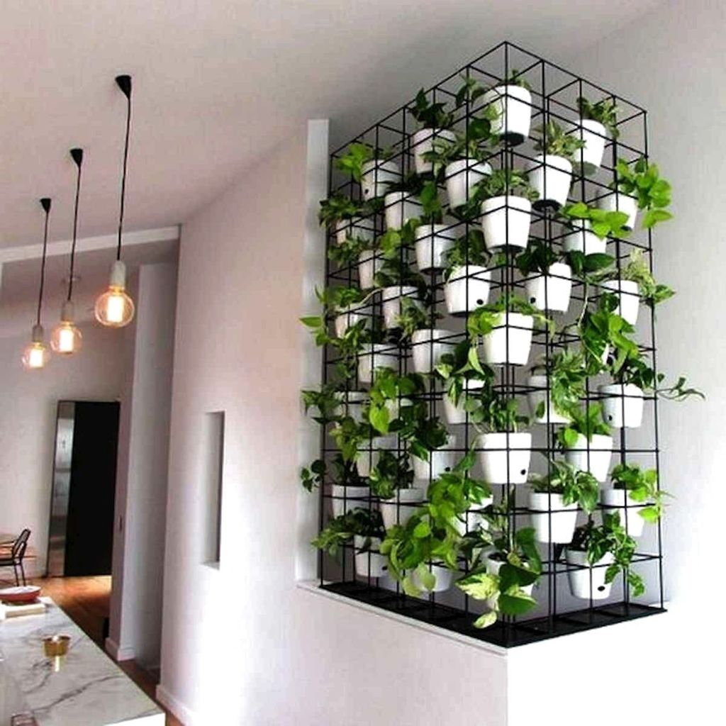 Amazing Living Wall Indoor Decoration Ideas 15