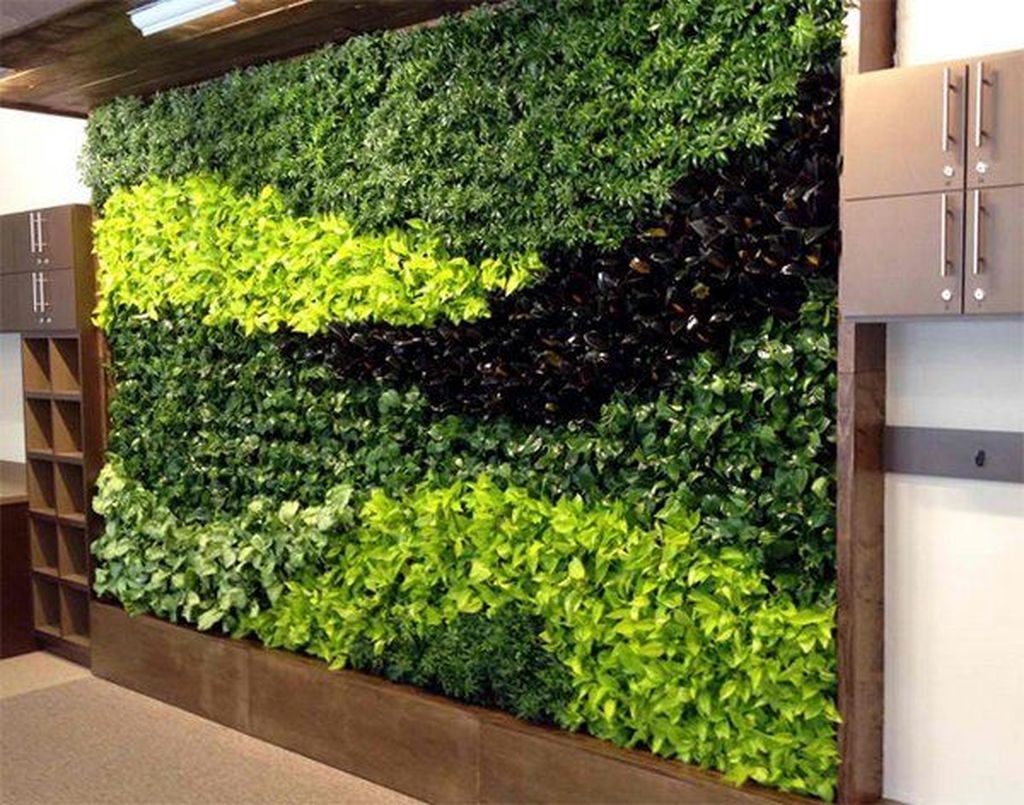 Amazing Living Wall Indoor Decoration Ideas 17
