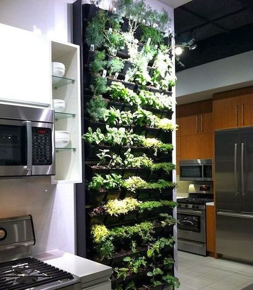 Amazing Living Wall Indoor Decoration Ideas 28