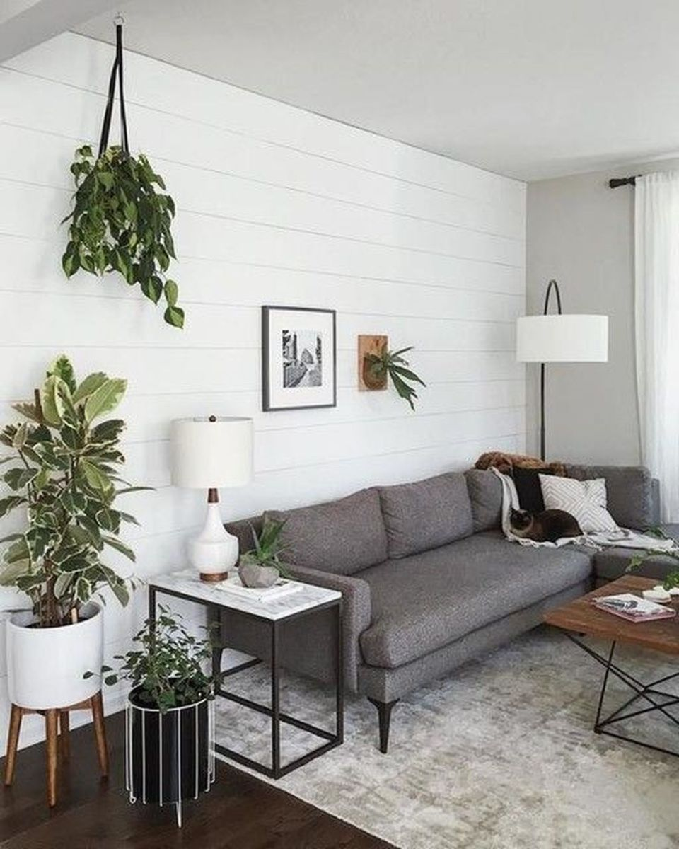 Brilliant Accent Wall Ideas For Living Room 29