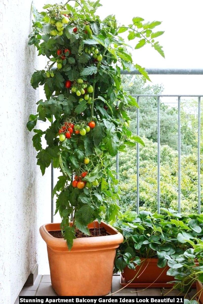 Stunning Apartment Balcony Garden Ideas Look Beautiful 21