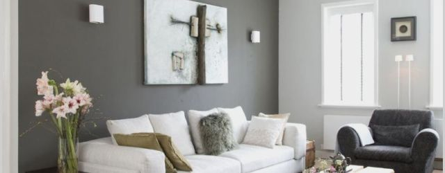 Gray Walls Living Room